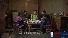 中央电视台七套《农广天地》节目走进云南